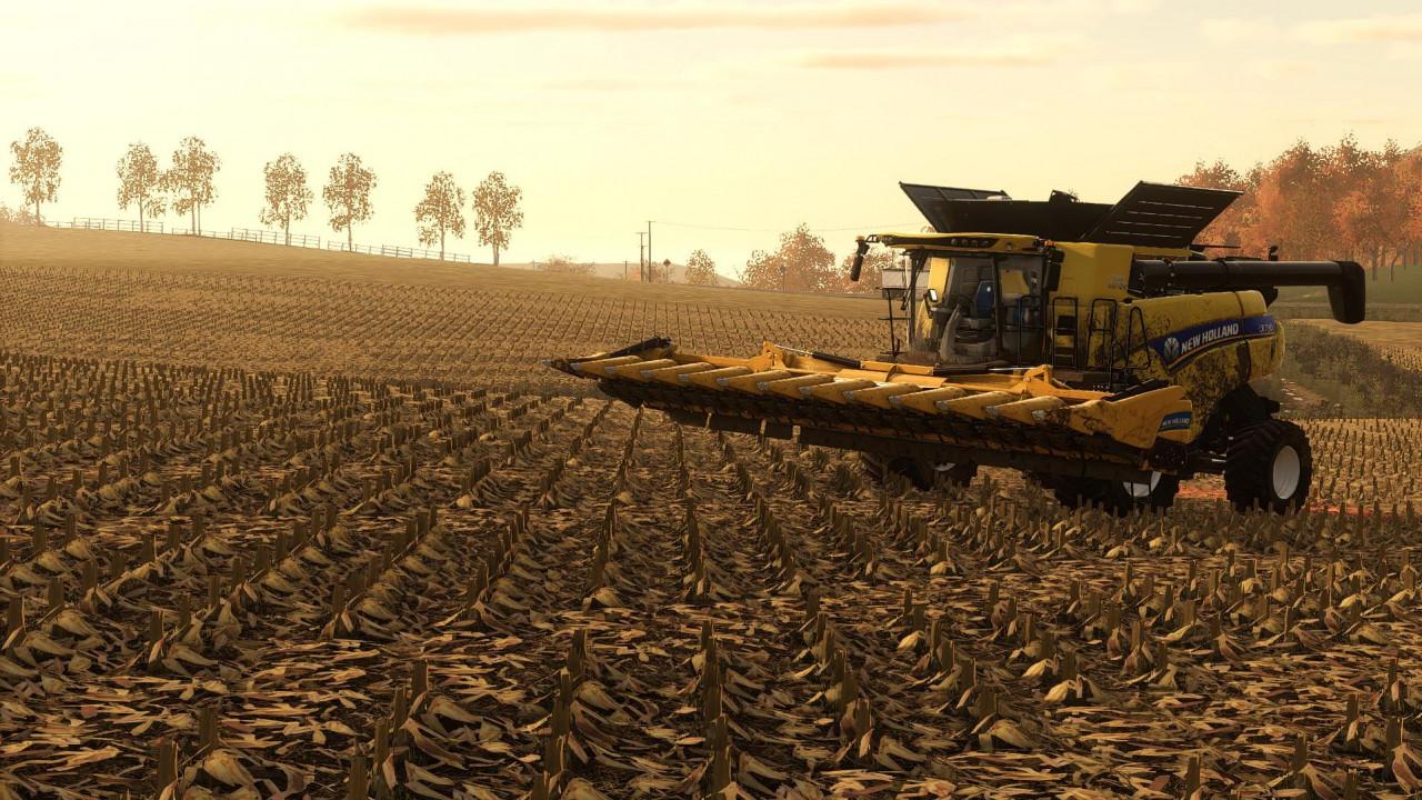 Corn & Soybeans