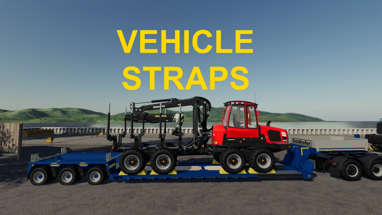 Vehicle Straps