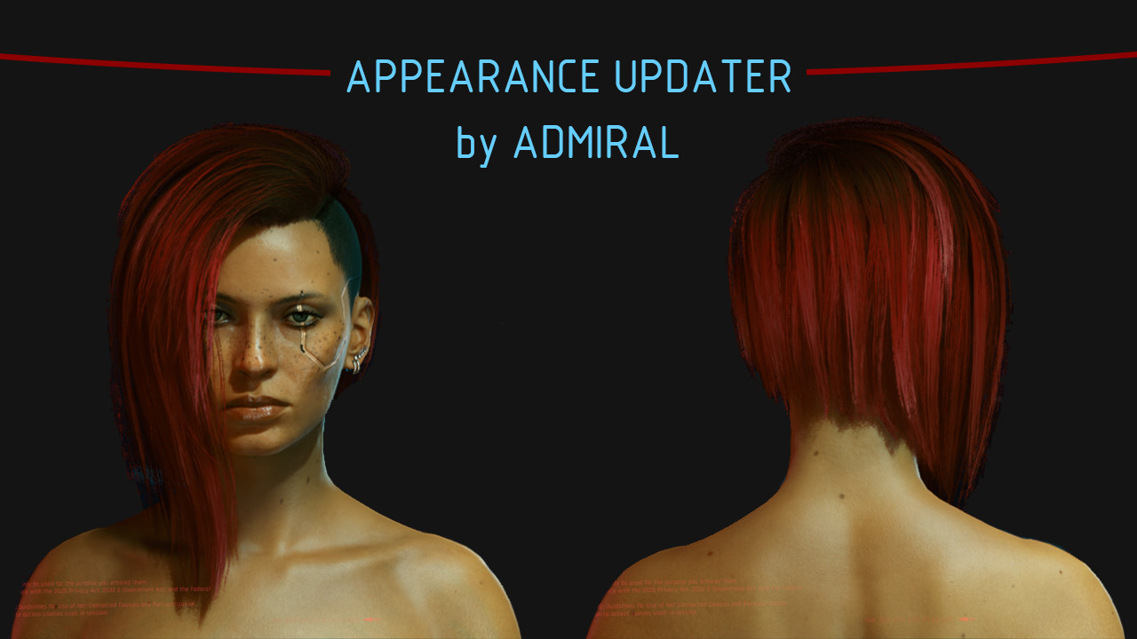 Arasaka Appearance Updater