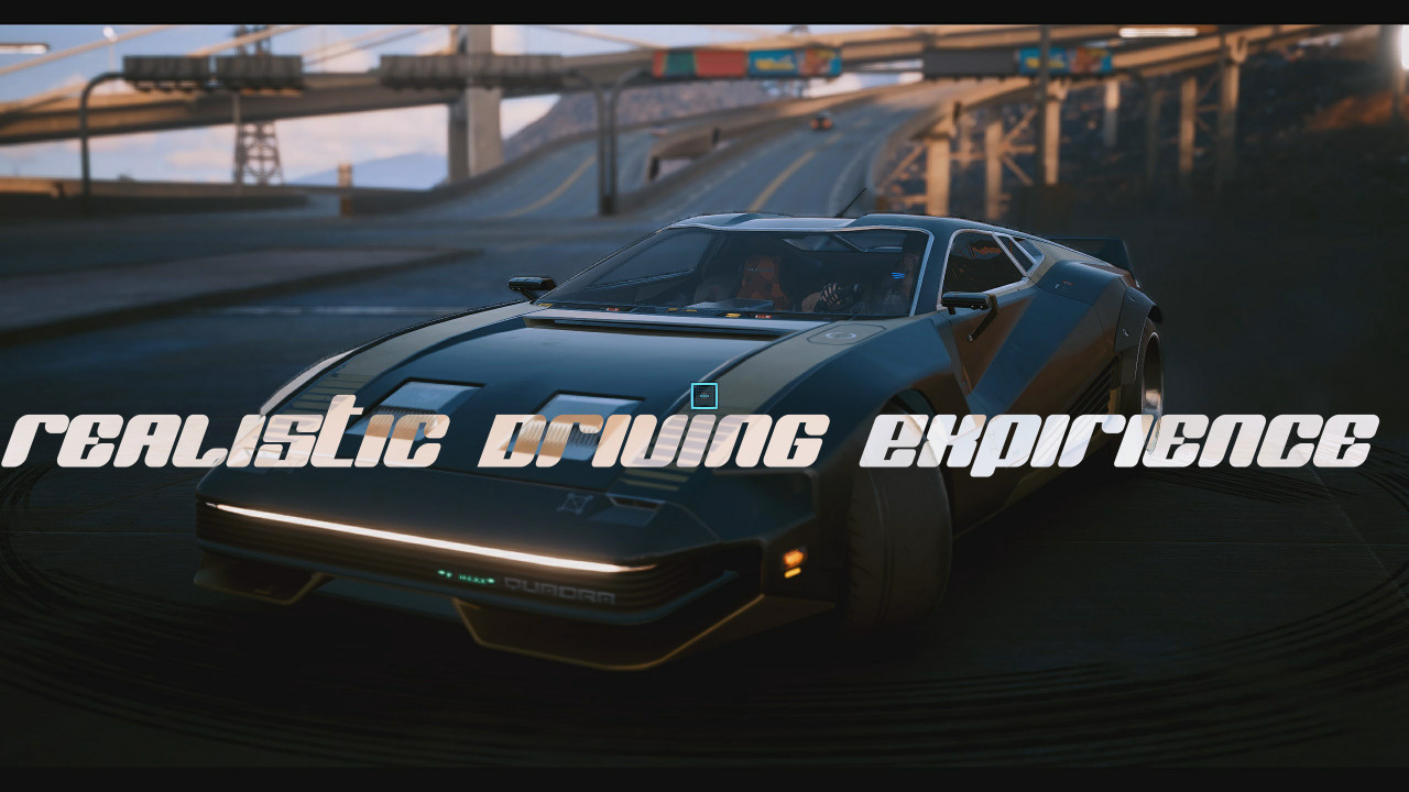 Realistic Driving Experience