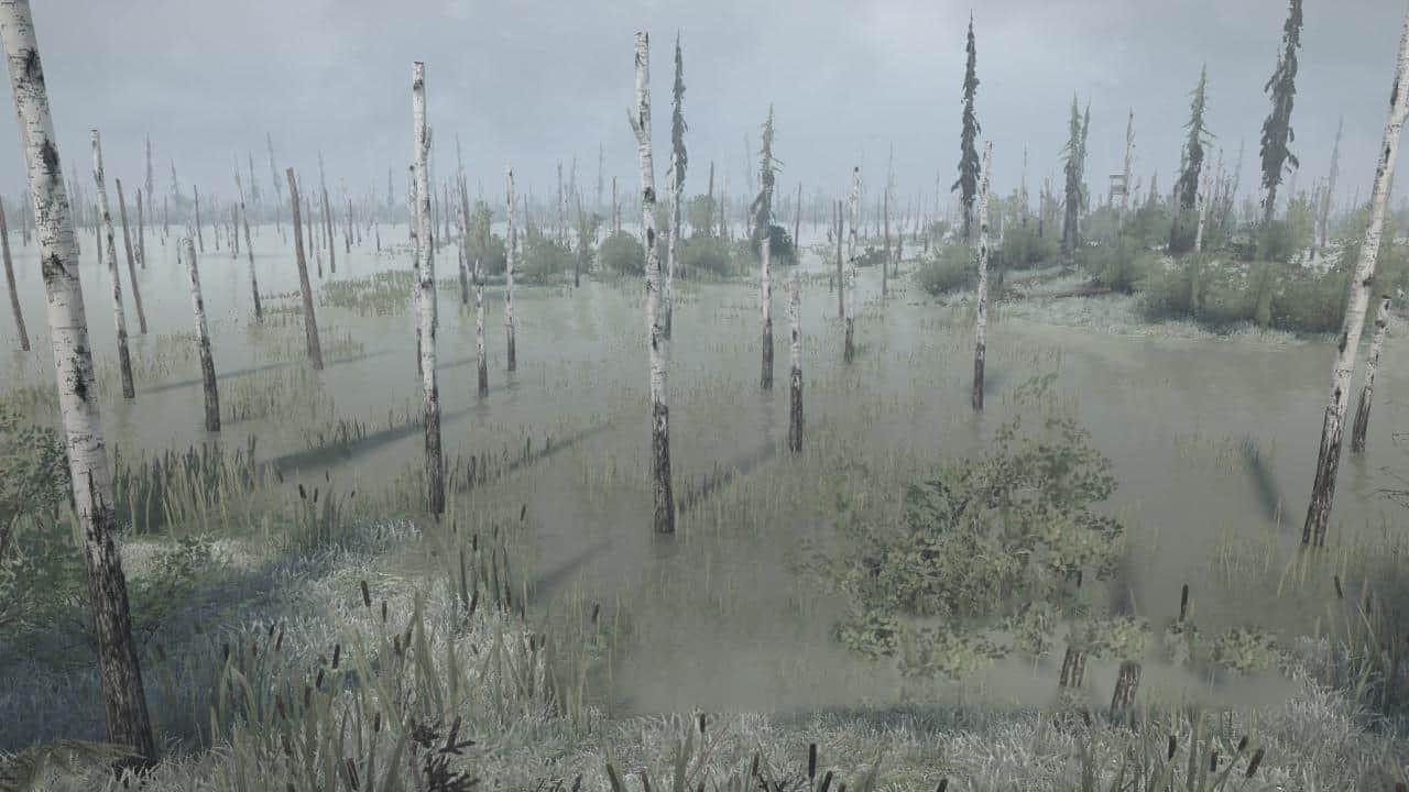 Bog map